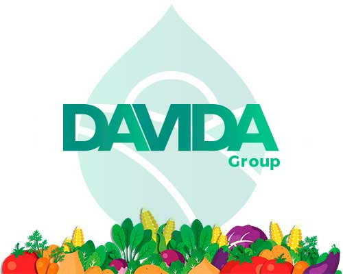 DAVIDA GROUP